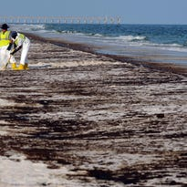 LETTER: Oppose ocean drilling to protect wildlife
