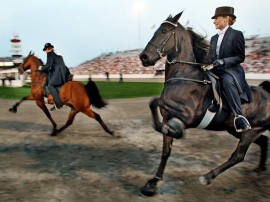 walking-horse.jpg