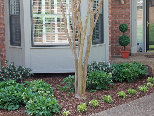 Owners spruced up the front planting beds of this home