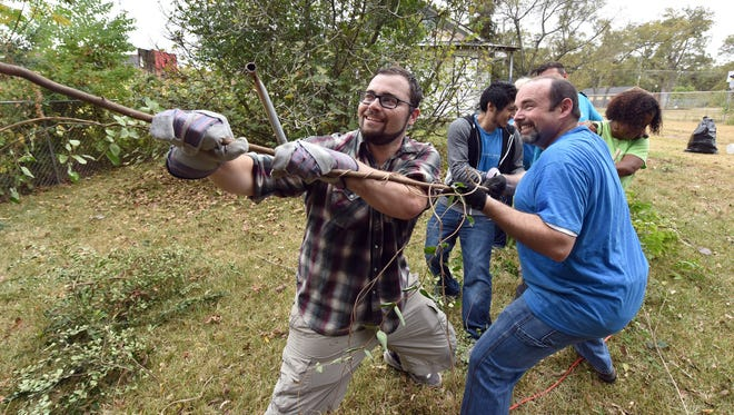 Clarion-Ledger employees, including Kohl Hames, left, and Sam Hall, right, tug on a vine Saturday during a Make A Difference Day clean up operation on Bailey Avenue in Jackson.