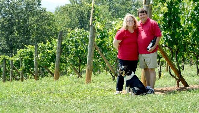 Jeff and Dianne Frisbee's winery, Addison Farms Vineyard in Leicester, will soon be featured on a trolley tour along with several other smaller wineries.