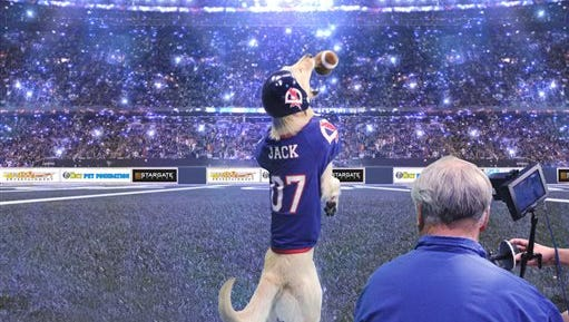 """In this image provided by the Lucy Foundation, cinematographer Sam Nicholson records quarterback Jack the dog in a scene in a fanciful Cats vs. Dogs football game scheduled to appear on Super Bowl Feb. 1. It won't be part of the game broadcast but will be an alternative show dubbed the """"Kitten Bowl"""" on the Hallmark Channel, three hours before the Super Bowl game on NBC."""