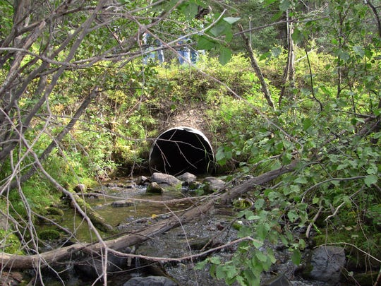 Culverts like this one on Klondike Creek on the Blackfoot River prevent trout from reaching spawning grounds. This culvert was removed.