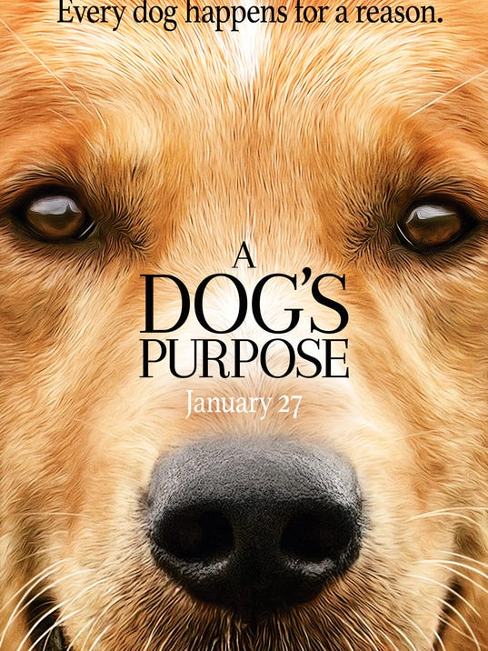 A Dogs Purpose Controversial Video