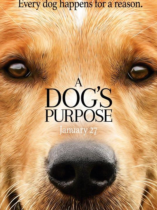 A Dog S Purpose Movies