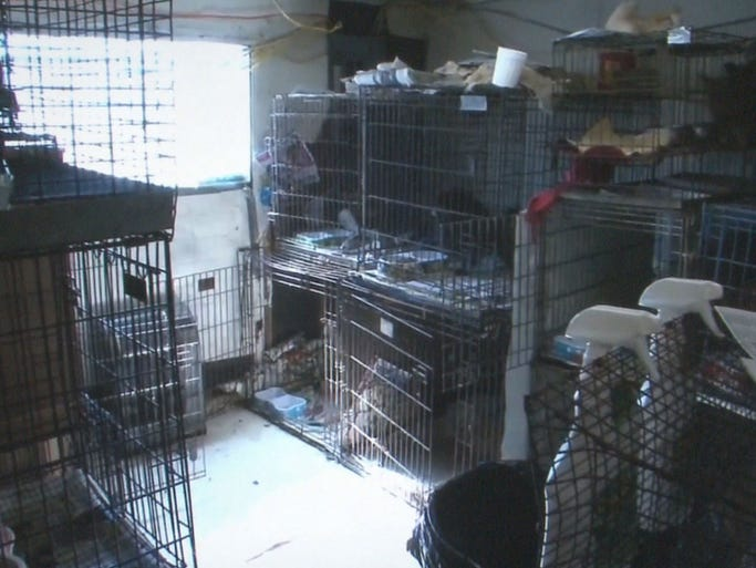 Jefferson County Puppy Mill