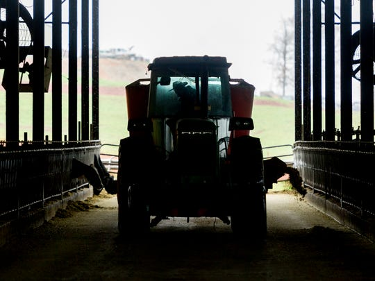 Caleb Watson spreads feed in the barn for the cattle on his dairy farm in Sweetwater, Tennessee on Monday, March 12, 2018. Watson received a letter of termination from Dean Foods and has 90 days to find a new producer.