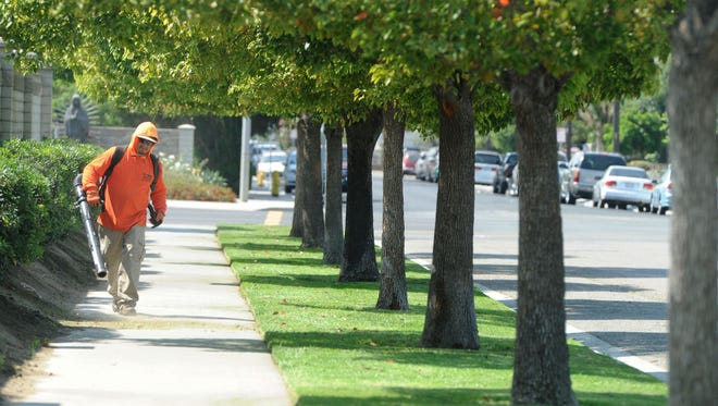 Restoring landscaping services for parks and medians is among the top priorities set by Oxnard City Council.
