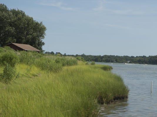 ZZ shoreline