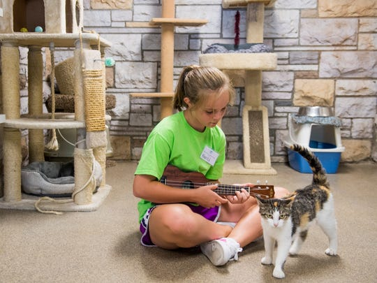10-year-old volunteer Nancy Tant sits on the floor and strums on her ukulele as she sings to a cat named Ashley currently at the Humane Society of the Tennessee Valley on Monday, July 2, 2018.