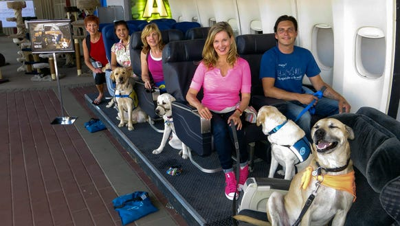 For 349 Class Will Train Your Dog For Airline Flights