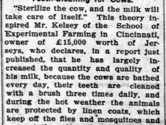 Teeth cleaning of cows. An interesting Sheboygan Press