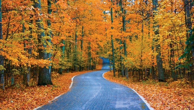 A scene from the Tunnel of Trees along M-119, one of the state's most popular fall color routes.