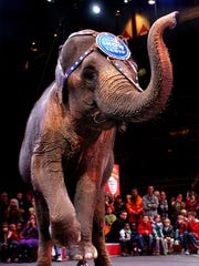 An elephant performs with The Ringling Bros. and Barnum
