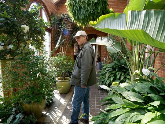 Kingwood Center Gardens director Chuck Gleaves looks over the greenhouse Tuesday, the facility opens to the public on Friday.