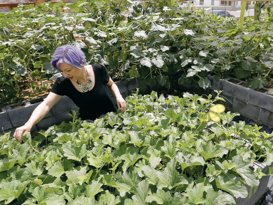 Xanthe Miller checks the progress on a client's garden Thursday at the Arizona Avenue Community Garden at First Christian Church, 901 Arizona. Garden plots are available with a drip-irrigation system and water and range in cost from 15 to 50.