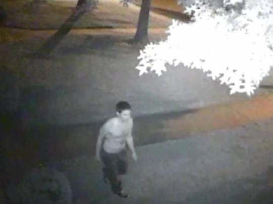 Newark police released surveillance images of a suspect in two attempted arsons early Saturday in the 100 block of Victoria Court.