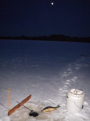 A walleye caught under a full moon on a lake in northern Wisconsin in December 2014.