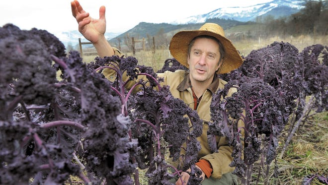 Chuck Burr grows kale and chard at his Restoration Farm  near Ashland.  He says had to throw away $4,700 in chard seed after learning it may have been contaminated from a  GMO field.