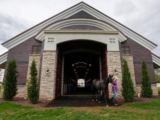Lora Wilson, the barn manager at Primatara, leads Wicked Ride out of the barn so she can run in the pasture on Thursday, May 3, 2018.