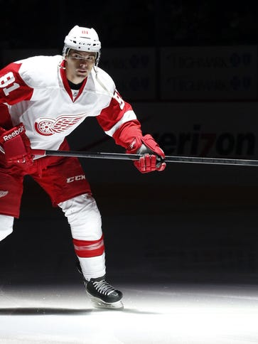 Detroit Red Wings left wing Jeff Hoggan (81) takes