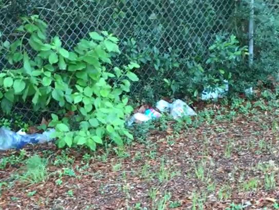 Litter at Lexington Terrace Park is seen on Tuesday,