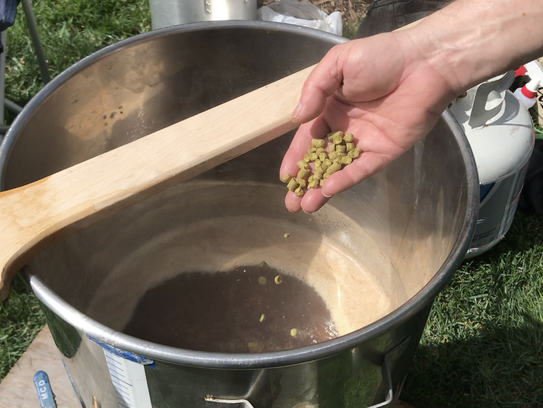 Jester Goldman adds hops to an American brown ale homebrew.