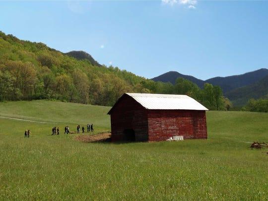 A Carolina Blue sky at Ivy Creek Family Farm.