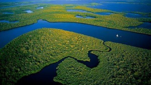The Everglades. (FILE PHOTO)