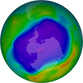 Satellites observed the largest ozone hole over Antarctica in 2006. Purple and blue represent areas of low ozone concentrations in the atmosphere; yellow and red are areas of higher concentrations.
