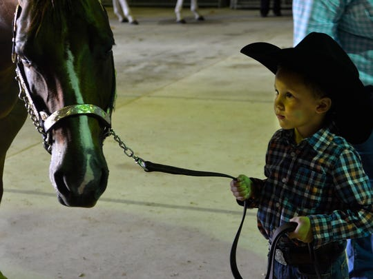 Five-year-old Jaelyn Taylor watches his horse, Deja, carefully at the Manitowoc County Expo on Sunday, May 29. Companions for most of the past two years, the two share a special bond. Taylor showed and rode Deja at the Wisconsin Appaloosa Horse Club Show, their first big competition of the year.