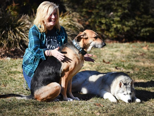 Kody, a 7-year-old German shepherd mix (left), will play in Animal Planet's Dog Bowl this weekend. Sasha, a 12-year-old Husky, will appear in commercials. Both are shown with Frannie Laurita, Social Media Marketing Specialist from the Ramapo-Bergen Animal Refuge in Oakland.