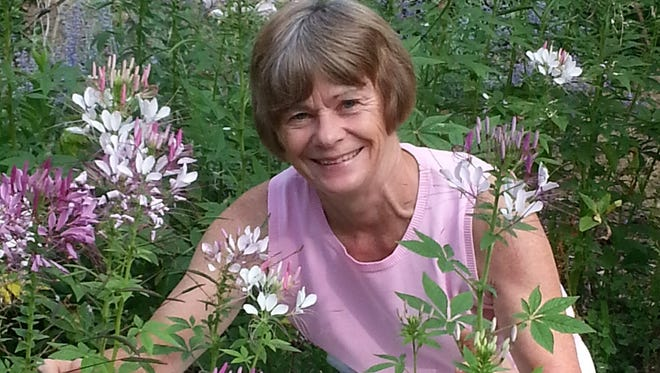 Author Kate Copsey of Ocean County offers tips on what to do when for a full year in your Jersey garden.