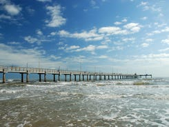 North Padre Island is a haven for nature lovers and birdwatchers.