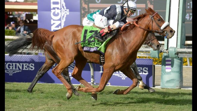 Main Sequence edged Twilight Eclipse to capture last year's $3 million Breeders' Cup Turf, securing honors as North America's champion turf horse as well as older male and runner-up to California Chrome as Horse of the Year.