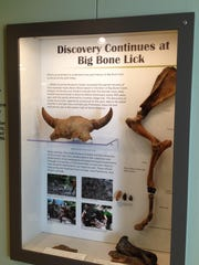 New thematic cases were debuted at an open house June 11, 2015, at Big Bone Lick State Historic Site's Visitor Center. Completion of the new educational displays is first of three phases through 2017 to relate the site's story more comprehensively to the public.