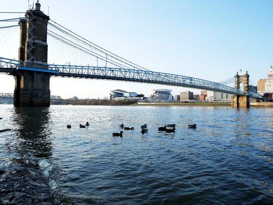 Roebling suspension bridgeOhio RiverPaul Brown Stadium Banks