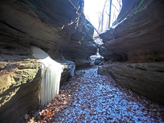 Water freezes into ice curtains in Fern Dell Gorge