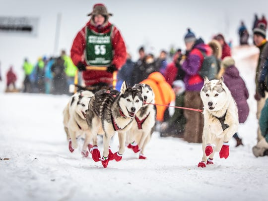 Alice White and her sled dog team race in the Apostle