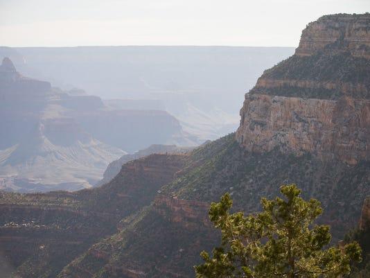 Canyon intervention