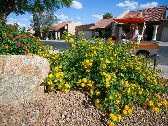 Hacienda del Rey in Scottsdale removed grass and planted a fruit orchard and xeriscape garden.