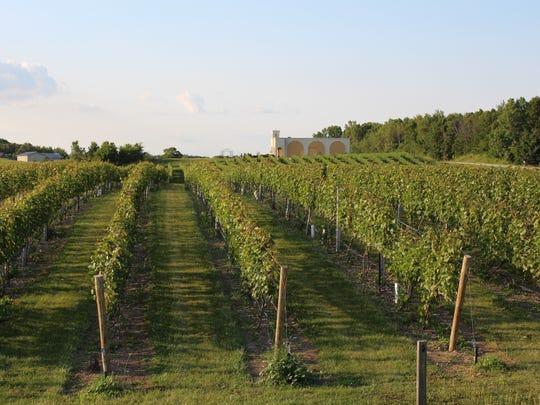 Parallel 44 Vineyard & Winery near Stangleville.