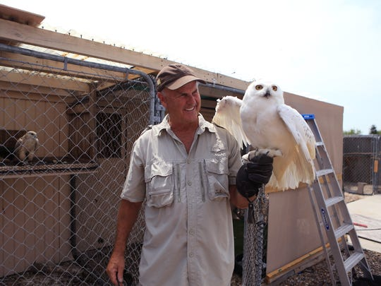 Jonathan Wood interacts with an arctic owl at his home in Corpus Christi. He owns the Raptor Project and lives in Corpus Christi part time. He turned a lifelong passion for falconry and birds into a successful business and travels the country with his birds.
