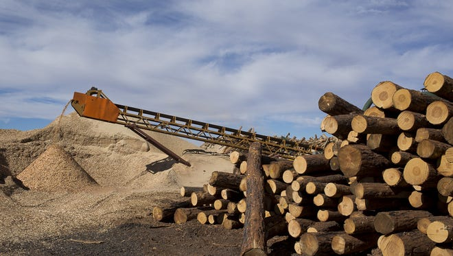 Logs are processed into wood chips at the Grand Canyon Forest Products mill in Williams.