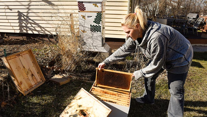 Leah Beack shows the parts of her bee hive Monday, April 11, in Sauk Rapids. Beack's hives sit next to her garage and garden, out of sight. Her city is among those that have a specific ordinance regulating beekeeping in residential areas, and Sartell is weighing requests for an ordinance as well.