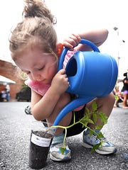 Two-year-old Peyton Roof waters a tomato plant that she got at the Farm to Table event Wednesday, June 15, 2016, at Lebanon Family Health Services, 615 Cumberland St., Lebanon. The health center celebrated summer with fun and food. Watch the video at LDNews.com.