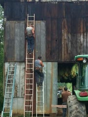 The Killian brothers, Donnie and J, work on the family tobacco barn in Cumberland Furnace. Story and more photos, page 6A.