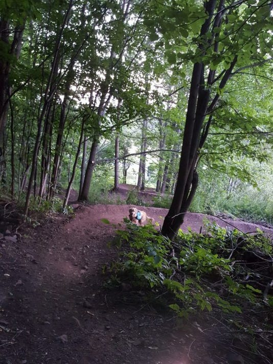 636486086326281426-Copper-peak-bike-trails-576x1024.jpg