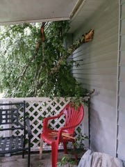 Severe weather Sunday morning caused a tree to fall on a Wakulla resident's home. No one was injured.