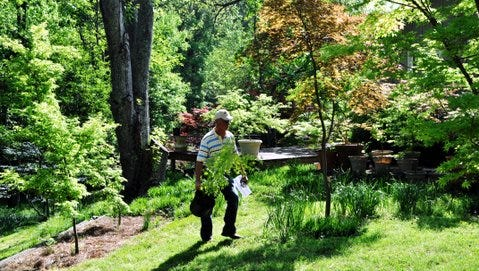 Gardening can lead to a new path for anyone who chooses to pick it up as a hobby.